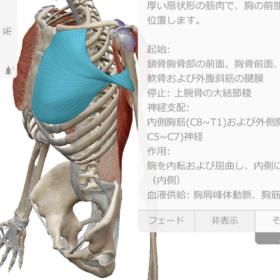 【トレーナ新井のフェイバリットトレーニング】①